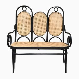 Bentwood Double Seat Bench, 1960s