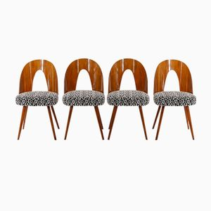 Chairs by Antonin Suman for Drevoimpregna n.p. Zavod Zilina, 1960s, Set of 4