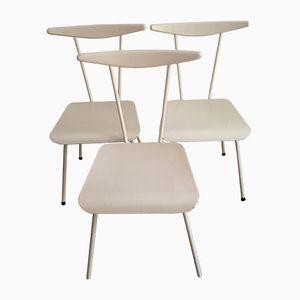 Niederländische Stühle von Wim Rietveld für Auping, 1950er, 3er Set