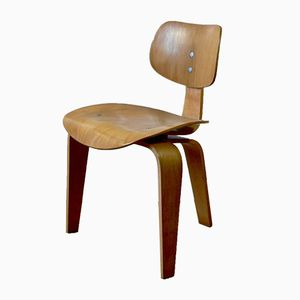 Mid-Century SE 42 Chair by Egon Eiermann for Wilde & Spieth