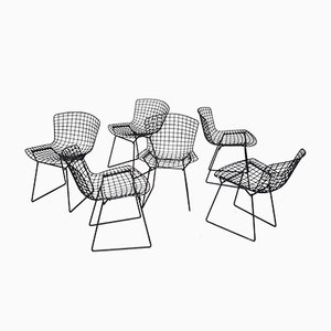 Vintage Chairs by Harry Bertoia for Knoll Inc. / Knoll International, Set of 6