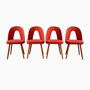 Vintage Dining Chairs by Antonín Šuman, 1960s, Set of 4