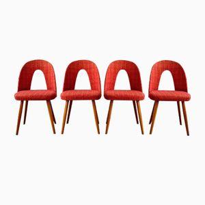 Vintage Esszimmerstühle von Antonín Šuman, 1960er, 4er Set