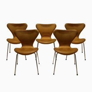 Vintage Modell 3107 Stühle aus Anilinleder von Arne Jacobsen für Fritz Hansen, 5er Set