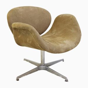 Little Tulip Chair by Pierre Paulin for Artifort, 1960s