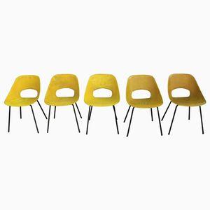 Stühle von Pierre Guariche für Steiner, 1960er, 5er Set