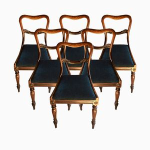 Victorian Dining Chairs with Baloon Buckle Back in Rosewood, 1870s, Set of 6