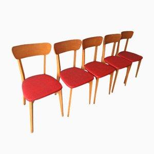 Stühle aus Holz & Rotem Skai, 1960er, 5er Set