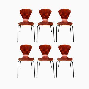 Bugholz Stühle von Fritz Hansen, 1960er, 6er Set