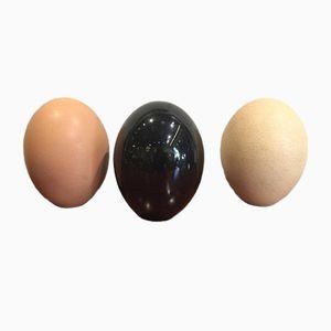 Keramik Eier von Pol Chambost, 1974, 3er Set