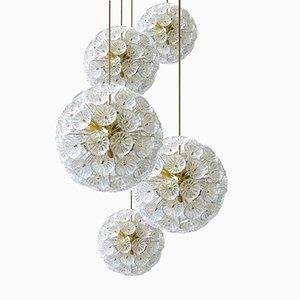 Lampadari floreali in vetro ed ottone, anni '60, set di 5
