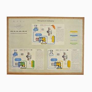Wirkungsweise der Schaltkupplung Fahrschule Lehrtafel von Opel, 1950er