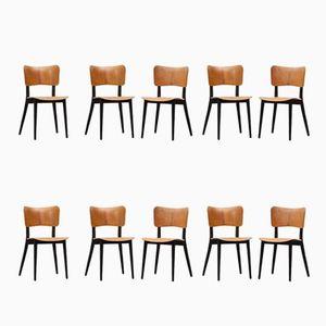 Chaises Vintage en Contreplaqué par Max Bill, Set de 10