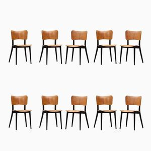 Vintage Plywood Chairs by Max Bill, Set of 10