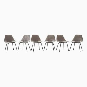 Vintage Chairs by Pierre Guariche for Steiner, 1954, Set of 6