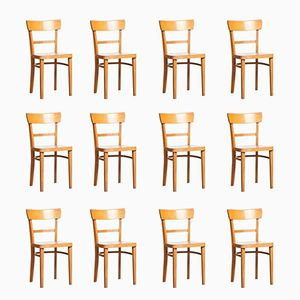 Frankfurter Chairs by Max Stoelcker for Thonet, 1930s, Set of 12