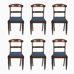 Antique Mahogany Regency Chairs, Set of 6