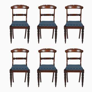 VAntique Mahagoni Regency Stühle, 6er Set
