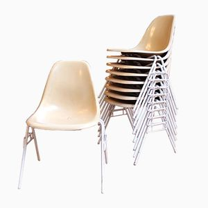 Fiberglass Chairs by Charles and Ray Eames for Herman Miller, 1950s, Set of 11
