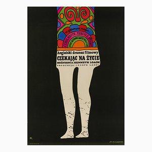 Poor Cow Plakat von Jan Mlodozeniec, 1969