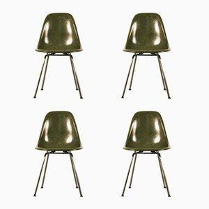Mid-Century Fiberglas DSX Stühle von Charles & Ray Eames für Herman Miller, 4er Set
