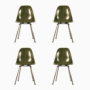 Mid-Century Fiberglass DSX Chairs by Charles & Ray Eames for Herman Miller, Set of 4