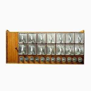 Meuble de Cuisine Frankfurter avec 14 Tiroirs et 12 Verre à Épices par Margarete Schütte-Lihotzky, 1950s