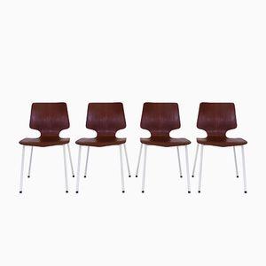Skandinavische Vintage Stühle aus Bugholz und Teak, 1960er, 4er Set