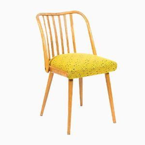 Mid-Century Dining Chair by Antonín Šuman