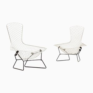 Bird Chairs by Harry Bertoia for Knoll International, 1960s, Set of 2