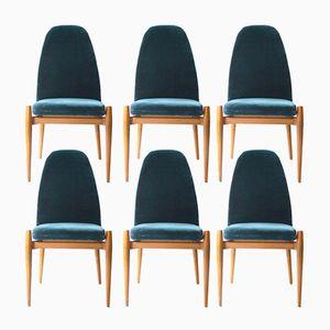 Stühle aus Eichenholz & Stahl, 1960s, 6er Set