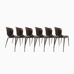Chaises de Salon Mid-Century de Flötotto Pagholz, 1950s, Set de 6