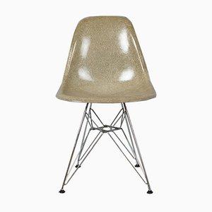 DSR Fiberglas Stuhl mit Eiffel Gestell von Charles & Ray Eames für Herman Miller, 1950er