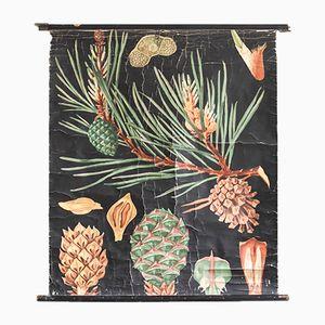 Pine School Poster by Jung, Koch, & Quentell for Hagemann, 1960s