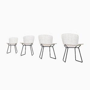 Weiße Diamond Metalldraht Stühle von Harry Bertoia für Knoll Inc, 1950er, 4er Set