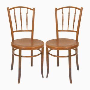 Vintage Stühle von Thonet, 2er Set