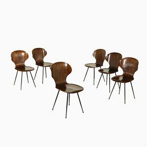 Stühle aus Bugholz & Metall von Carlo Ratti, 1950er, 6er Set