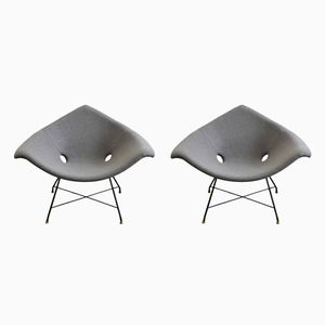 Lounge Chairs by Augusto Bozzi for Saporiti, 1950s, Set of 2