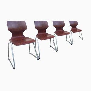 Vintage Stühle von Adam Stegner für Flötotto Pagwood, 1970er, 4er Set