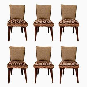 Stühle von Pier Luigi Colli, 1950er, 6er Set