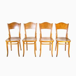 No. 120 Chairs from Thonet, 1920s, Set of 4