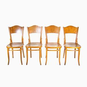 Nr. 120 Stühle von Thonet, 1920er, 4er Set