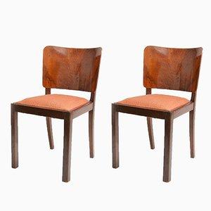 Walnuss Furnier Stühle von Thonet, 1920er