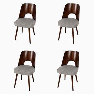 Tschechische Schichtholz Stühle von Oswald Haerdtl für TON, 1950er, 4er Set