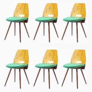 Dining Chairs in Walnut Veneer by Frantisek Jirak for Tatra, 1960s, Set of 6