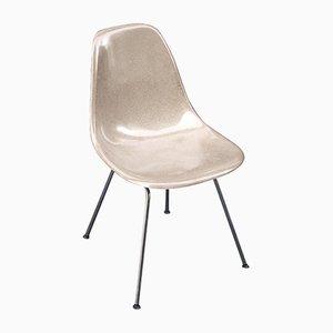 Modell DSX Stuhl von Charles & Ray Eames für Herman Miller, 1970er