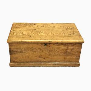 Antike Ulmenholz Kiste