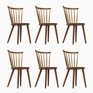 Dining Chairs by Yngve Ekström for Stolab, 1950s, Set of 6