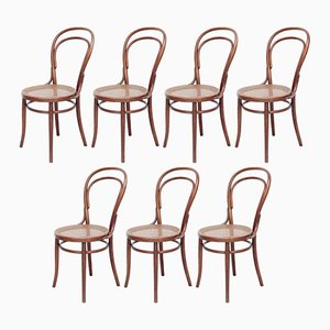 Bentwood Chairs from Türpe, 1900s, Set of 7