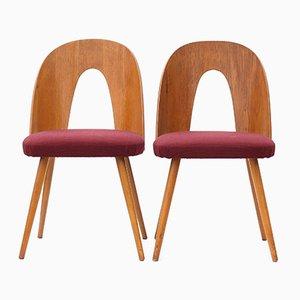Plywood Chairs by Antonín Šuman for Tatra, 1960s, Set of 2